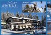 #Promozioni e #offerte del Sores in Val di Non / Tutte le nostre #offerte #imperdibili per una #vacanza in #ValdiNon #Trentino http://www.hotelrifugiosores.it/IT/family/listinoprezzi/promozioni/Offerte-last-minute-sconti.html