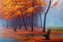 Fall ........and rain.....