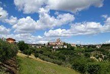 Massignano / Massignano è situato a 255 metri sul livello del mare; secondo alcuni storici fu fondata dai sabini in epoca pre-romana, mentre secondo altri sarebbe stata un sobborgo dell'antica ed estesa città romana di Cupra.