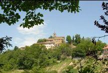 Palmiano / Palmiano è il più piccolo comune del territorio piceno. Situato a 769 metri s. l. m., sorge nella vallata del torrente Cinante, in un paesaggio silente dominato da masse boscose e campi coltivati.