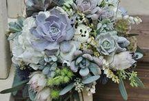 Bouquet SUCCULENTS