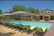 Apartment Pools / Resort-style Pools at the Best Apartments for rent!