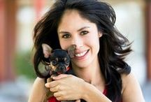 Pet-Friendly Apartments / The Best Apartments for rent for you and your pets!