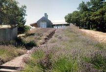 Napa Knoll Residence / Napa, California