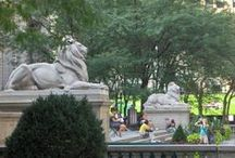 New York - Landmark Libraries / Lions, Patience and Fortitude, have been perched on the steps of the Public Library on 5th Avenue in New York City since 1895! This is a  salute to them and the wonderful landmark they guard. Several other beautiful libraries that are true architectural gems are also included here.
