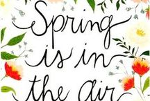 Spring Break / Spring into the new season with fun family ideas to play outside, family vacation and travel tips, and everything you need for Spring cleaning and organizing.