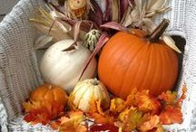 Autumn FALL Halloween & THANKSGIVING / My favorite time of year