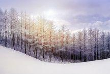 Noel / Christmas / L'hiver / Winter☃ ❄️ / Színek, hangulatok, ízek
