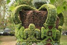 gaby topiaryart / tuinkunst / gaby b topiaryart / tuinkunst