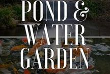 Ponds & Water Gardens / Whether you're looking for inspo. or advice, this is the board for you!