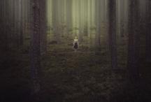 En irrota Vol 2.0 / Cinematography guide / mood board for a fantasy short film. Second edition.
