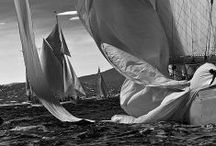 Let´s sail away  / We cannot control the wind ,but we can direct the sail...