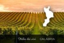 Italia dei Vini