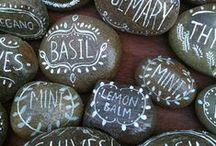 [home grown] / Mint. Sage. Coriander. Basil (sweet). Parsley. Thyme. Rosemary. Chives. Lemon balm.