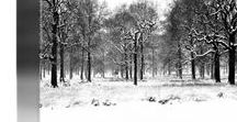 Black And White Landscape Photography Prints