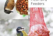 DIY Pets / DIY items for animal lovers