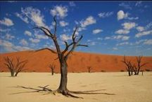 Namibia, Africa / Exploring Africa: Why Namibia's Sossusvlei Desert is Surreal. Learn more at http://escaper.co