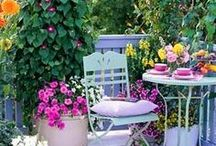 Balcony Garden Ideas to go with your Envirocycle Composter