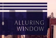 Alluring Window NYC