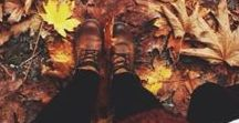 Autumn / Photo inspiration and nice moody autumn climate.