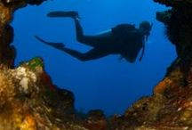 Dive Travel Inspiration / Dive Travel Inspiration around the world