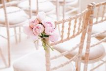 Chiavari Wedding Chair / The popular Chiavari wedding chair. An elegant option finished with a delicate lime wash.