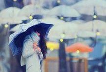 Rain & Shelter