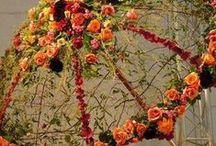 florystyka / sztuka i rośliny