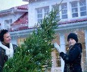 Winter House / Finland winter
