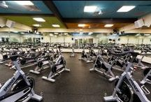 Harbor Fitness Clubs