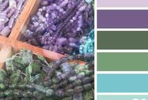 Colorful Mind / The beaty of design seeds