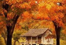 Autumn, Outono, Otoño