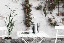 Terrazzi&Giardini
