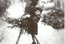 Christmas / by Rebecca