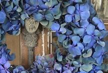 wreath / by Michele