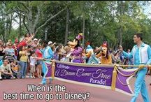 Disney World - When To Visit / Tips on when to visit Walt Disney World.  / by Couponing to Disney