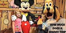 Disney World - Pricing Trip / Tips and advice on how to price and book your Walt Disney World trip.