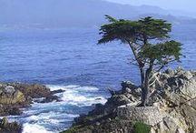 California Places