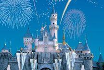 Disney world / The magic of Walt Disney World
