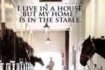 Horse Quotes  / B&D Builders takes pride in building beautiful homes for beautiful horses. Here are some horse quotes we thought you would get a kick out of! :)