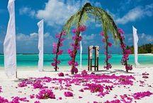 Beach Wedding / Dream beach wedding ideas
