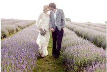 Lavender Love Wedding Inspiration