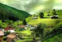 Mi Tierra - Romania-Home
