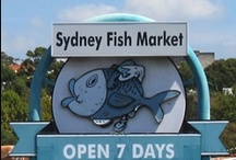 Sydney / Fun things to do in Sydney Australia with kids / by Travel for Kids