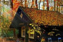A little house in the mountain / Ai, Ai...