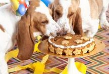 Pet Celebrations: Pet Parties! / Ideas for Barkday Pawtys and other festive celebrations with your favourite Pawty Animals. Enjoy these cute dog / pet DIYs and treats, and check out our other boards for more fun and festive ideas. Woofs!