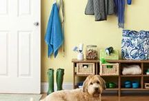 Better Living with Pets / Tips, tricks, DIYs, hacks, and fun finds for sharing your home and life with pets. Stay happy, organised, clean, fit, healthy and safe together.