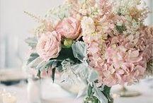 +  SY flower arrangements +
