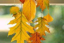 Autumn  / ideas with pumpkins