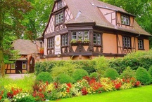 Jardim dos Sonhos... / Queria ter no meu quintal...